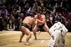 Sumo in Osaka-46 (Rodrigo Ramirez Photography) Tags: japan amazing traditional professional tournament osaka sumo yokozuna ozeki makuuchi hakuho sumotori sumotournament maegashira reikishi harumafuji topdivision