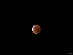 () Tags: moon eclipse minolta taiwan olympus celtic tainan  lunar  omd lunareclipse 135mm em5