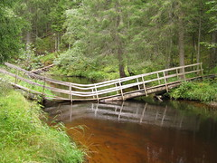 Knak (Merodema) Tags: bridge broken water beek nat brook brug overkant bruggetje knik gebroken knak oeps stroompje nattevoeten geknakt