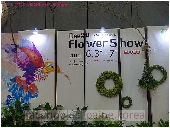 高陽國際花卉博覽 (68).JPG