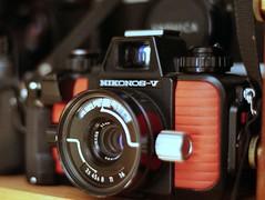 Nikon Nikonos V (Chi Bellami) Tags: film fujifilm fujicolor c200 nikon f80 35mm slr scanned scan colour c41 negative chibellami nikonos v amphibious camera underwater waterproof