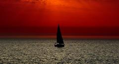 Sailing at sunset - Tel-Aviv beach (Lior. L) Tags: sunset beach silhouette sailboat israel telaviv sailing sailingatsunsettelavivbeach