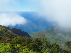Waimea Canyon State Park (jenesizzle) Tags: kauai hawaii paradise island outdoors landscape canyon waimeacanyon fog napali napalicoast napalilookout statepark waimeacanyonstatepark