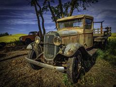 A Fine Example (keith_shuley) Tags: palouse colorful colors yelllow blue brown green orange canola rust truck trucks easternwashington washington olympusomdem1