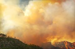 DSC_0356 fire hdr 850 (guine) Tags: grandcanyon grandcanyonnationalpark canyon northrim fire smoke fullerfire trees plants hdr qtpfsgui luminance