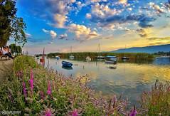 Struga Summer 2016   Enjoy the view (Amer Demishi) Tags: macedonia struga ohridlake