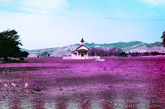 Old San Simeon School House - Infrared (Lon Casler Bixby) Tags: loncaslerbixby neoichi nature naturephotography nikonphotography landscapephotography landscapes scapes schoolhouse california sansimeon purple lomochrome 35mm infrared infraredphotography travelphotography fineartphotography fineart fineartprints interiordesign wanderlust oldbuildings oldhouses artistic artisticphotography artprints rural outdoorphotography american americana abstractphotography abstract abandoned abandonedbuildings abandonedstructures abandonedhouses streetphotography streetscenes structures decay countryfence inthecountry buildings nikon