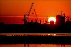 (Massimo Cerrato) Tags: backlight industry orange piallassa ravenna siluette sun sunset sunsetsunrise valle