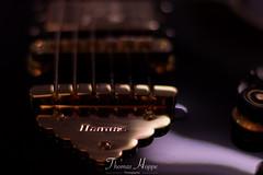 IMG_8595.jpg (thomas_hoppe) Tags: egitarre ibanez