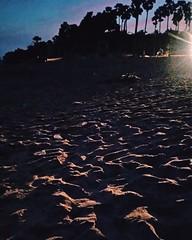 2016-07-12_09-32-42 (nivedhashrivats) Tags: trees beach nature sand dusk skyblue pondi postsunset pinkishglow thatlightingthough
