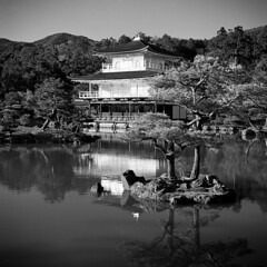 The Golden Temple in Black And White (Ashley The Hoff) Tags: blackandwhite japan kyoto bronica kinkakuji ilford fp4 goldentemple sqai