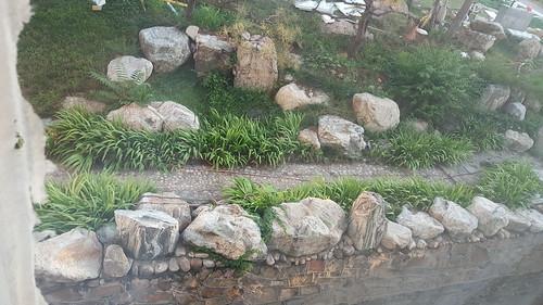 山東 青島 2016 06 23