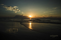 Reflect in the morning (vanita kataria) Tags: florida cocoabeach cocoa beach port canaveral morning summer sunrise reflection waves layers sea ocean atlantic atlanticocean clouds landscape nature calm sand bird blue sky salt water usa canon 6d dslr happy peaceful early reflect meditate