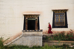 (cherco) Tags: composition composicion china tibet monk monje colour canon color walk alone solitario solitary flower flor red rojo