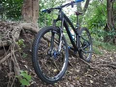 P1030614 (wataru.takei) Tags: mtb lumixg20f17 mountainbike trailride maintenance japan canfieldbrothers epo