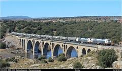 Al final acabamos siempre aquí (Trenes2000) Tags: tren trenes diesel bio 333 avila doble renfe mercante mercancias vossloh bioetanol babilafuente