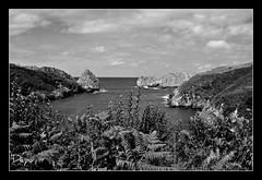 La entrada (depu1056) Tags: sea bw espaa landscape mar spain nikon paisaje bn cantabria ribbet d300 prellezo