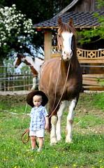 Alexander und Cowboy (Kraqueboom) Tags: horse love child kind riding gilr western pferd bund freundschaft liebe mdchen connection reiten junge pinto reining schecke freiberger verbunden