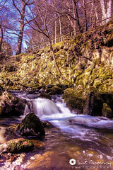 Shimna River (ig_613) Tags: county ireland irish mountains forest river newcastle stones down national stepping trust northern ulster mournes tullymore shimna