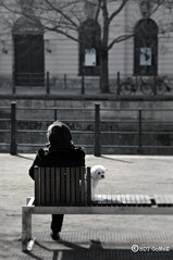 Berlin Dog walker (www.hot-gomez-fotografie.de) Tags: woman dog berlin river germany bench deutschland nikon sitting walker spree d3