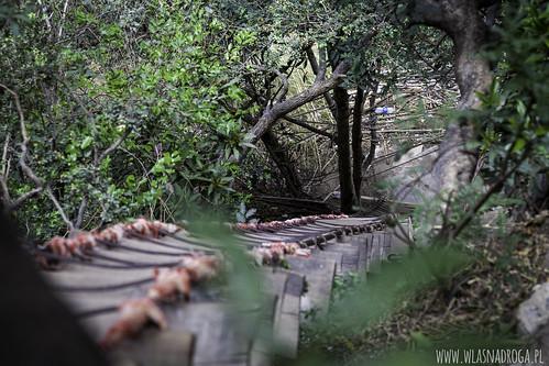 Wąwóz Skaczącego Tygrysa