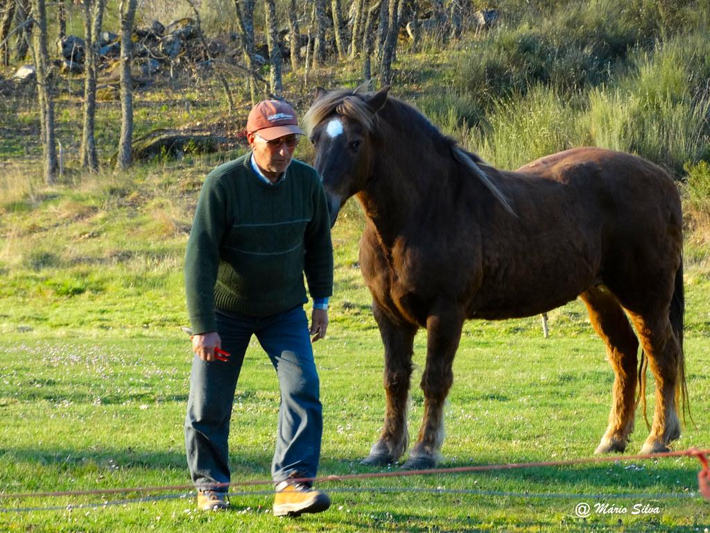 Águas Frias (Chaves) - ... O belo cavalo e o seu dono ...