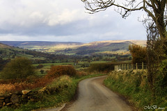 11815616724_f7e4122b1d_o (gleesang) Tags: nov road landscape yorkshire 2012