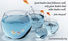 quote-liveintentionally-good-leaders-lead-followers-well (pdstein007) Tags: inspiration quote carpediem inspirationalquote liveintentionally