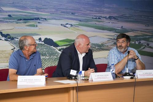 Sectorial Vino. Villena (12-07-2016)