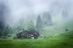 28% (Mopple Labalaine) Tags: house alps rain fog clouds farmhouse nebel farm swiss overcast alpen bernese myst berneroberland griesalp