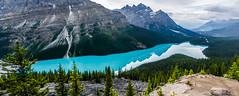 Peyto Lake - Banff National Park (achinthaMB) Tags: peytolake banffnationalpark icefieldparkway rockies canada canadianrockies alberta canonrebelt2i canoneos550d