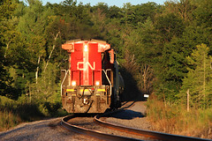 3rd Season (view2share) Tags: cn2187 cn canadiannational august72016 august2016 august 2016 ruskcounty wi wisconsin ge generalelectric c408w longhoodforward backward summer local engine locomotive barronsub westbound westernwisconsin railway railroading rr railroads rail rails railroaders rring railroad restoration renovation rebuild rural trains train track transportation tracks transport trackage trees freight freighttrain freightcar freightcars fracsand frac deansauvola evening afternoon branchline branch old14