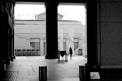 In the luxurious court (pascalcolin1) Tags: japan tokyo cour court photoderue streetview urbanarte noiretblanc blackandwhite photopascalcolin