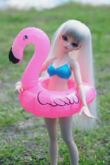 Purrin x Summer Break (L a l e t t e *) Tags: bjd balljointeddoll msd 14 ball jointed doll minifee mnf fairyland rheia