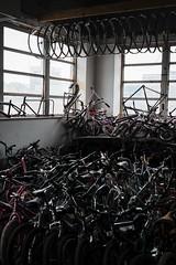 Detroit: Back Alley Bike Hub (davelawrence8) Tags: usa mi spring downtown detroit bikes 2015 fujixe1