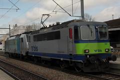 BLS Ltschbergbahn Re 4/4 504 und RAILPOOL Lokomotive Baureihe 186 108 - 7 im BLS Cargo Design unterwegs fr BLS Cargo am Bahnhof Bern Weissenbhl bei Bern im Kanton Bern der Schweiz (chrchr_75) Tags: chriguhurnibluemailch christoph hurni schweiz suisse switzerland svizzera suissa swiss chrchr chrchr75 chrigu chriguhurni april 2015 albumzzz201504april albumbahnenderschweiz albumbahnenderschweiz201516 schweizer bahnen eisenbahn bahn train treno zug albumblsltschbergbahn bls ltschbergbahn albumsbbre44iiiii lok lokomotive sbb cff ffs schweizerische bundesbahn bundesbahnen re44 re 44 juna zoug trainen tog tren   locomotora lokomotiv locomotief locomotiva locomotive railway rautatie chemin de fer ferrovia  spoorweg  centralstation ferroviaria