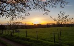 Sway Sunset 27 April 2015 (StephenSmithPhoto) Tags: sunset landscape countryside englishcountryside farmfields stephensmith springsunset swaytower hampshirephotographer hampshirephotography stephensmithphotography swsmithphoto lymingtonphotographer lymingtonphotography swayfields swaytowersunset