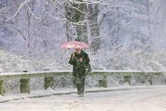 Central Park: Winterland (rtanphoto) Tags: nyc newyorkcity winter usa white snow cold nature photoshop canon souvenirs centralpark empirestate bigapple winterland touristattraction snowland niksoftware ononesoftware rommeltan rtanphoto wwwrommeltanphotographycom