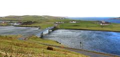 Trondra Bridge (falkirkbairn) Tags: shetland