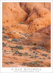 Redrock Hills (G Dan Mitchell) Tags: red terrain usa monument nature rock america print landscape utah sandstone north stock hills national license escalante grandstaircase