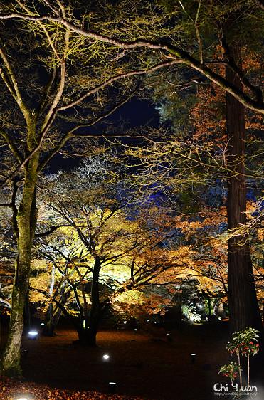嵐山寶嚴06.jpg
