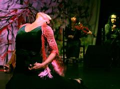 Kuge9 (Instituto Cervantes de Tokio) Tags: music art dance concert gallery arte dancing guitar live danza concierto guitarra galeria livemusic exhibition msica baile flamenco vivo institutocervantes directo  exposicin     flamencodancing guitarraflamenca  exhibicin flamencoguitar  msicaenvivo  msicaendirecto baileflamenco