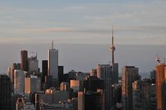 Toronto dalla finestra-Canada-Nicola-Lacetera