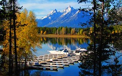 Grand Teton National Park (udbluehens (1,000,000)) Tags: grandteton grandtetonnationalpark colterbaymarina grandtetonfallcolors