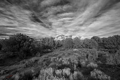 beloved fractals (jecate) Tags: blackandwhite southwest nature monochrome landscape desert cloudscape naturescenes naturalpatterns naturetherapy thebeautyofgray