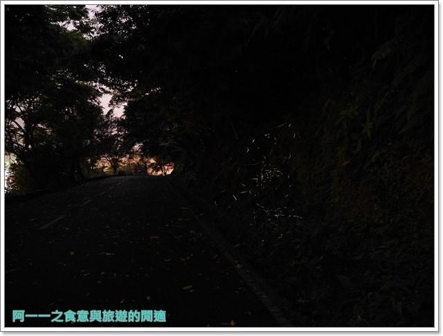 花蓮鯉魚潭螢火蟲賞蝴蝶青陽農場攝影花蓮旅遊image035