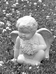 Cherub by Kim Newberg (ihave3kids) Tags: statue cherub photoshopcontest publicdomainphoto photoshopcompetiton