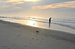 Wildwood 2016 (emilysanto) Tags: beach ocean water sand wildwood new jersey morning sun seagulls birds