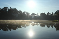IMG_6827 (rafaeldeoliveira) Tags: curitiba paran brasil inverno winter geada freeze gelo parquebacacheri canon canoneosrebelt2i
