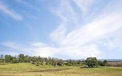 Lot 118 Mount Harris Drive, Maitland Vale NSW